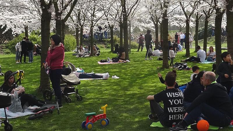 Mensen zittend in park
