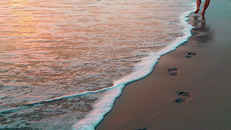 Je spirituele leraar - blog van Ojas de Ronde