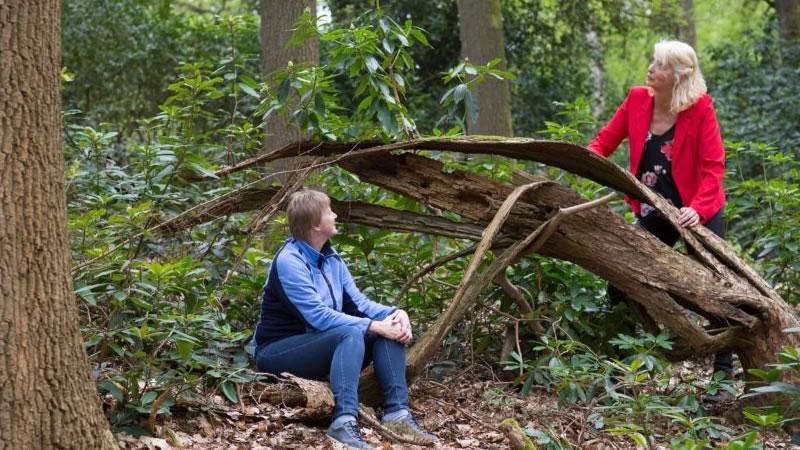 Twee mensen in gesprek bij een boom